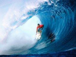 Скачать готовый Surf