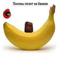 Мемы CS: плэнт на банане